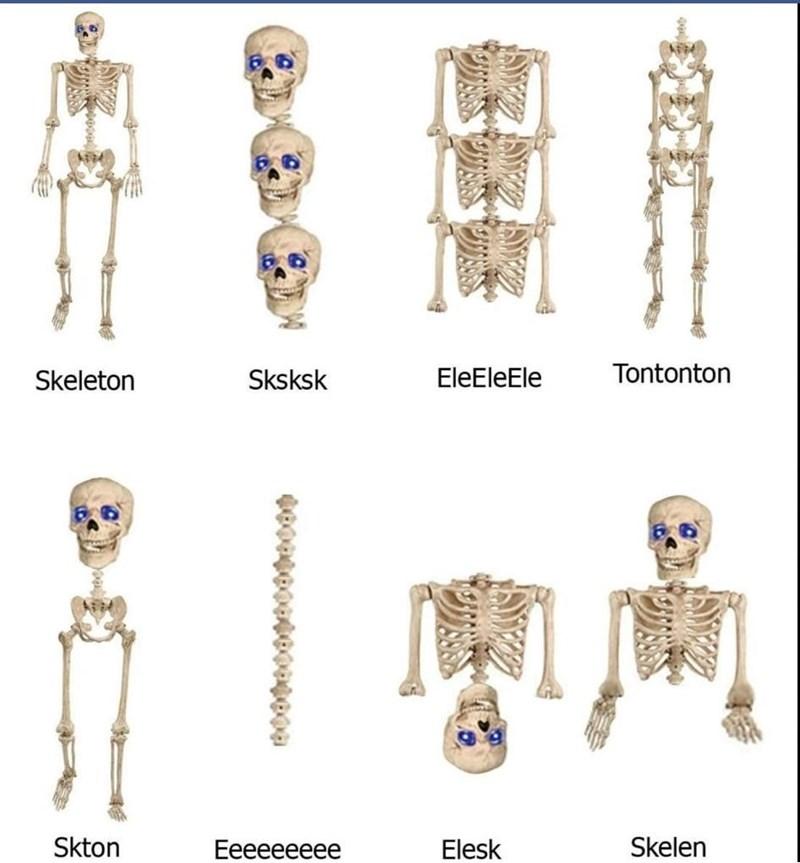 Joint - Skeleton Sksksk EleEleEle Tontonton Skton Еееееееее Elesk Skelen 3