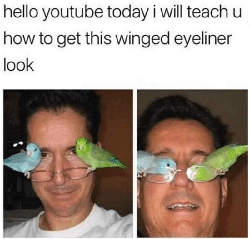 hello youtube today i will teach u how to get this winged eyeliner look | man with two parakeets small birds sitting on his glasses