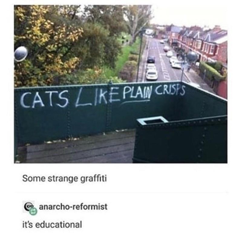 Asphalt - CATS LIKE PLAIN CRISFS Some strange graffiti anarcho-reformist it's educational