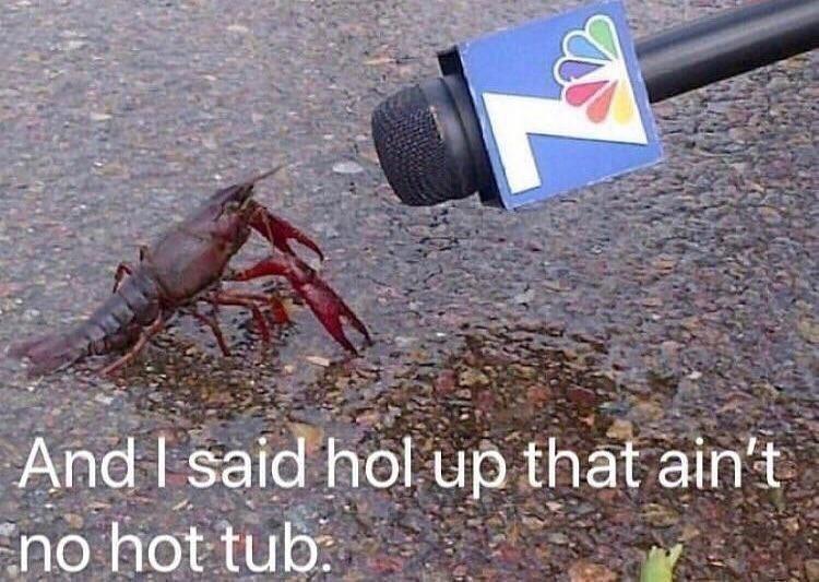 Crayfish - And I said hol up that ain't no hot tub: