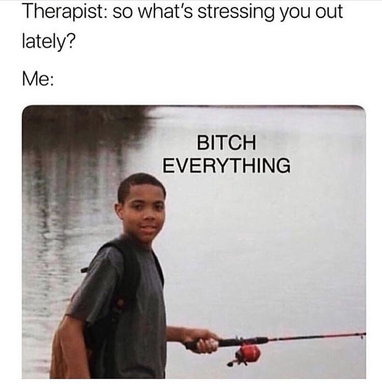 Text - Therapist: so what's stressing you out lately? Me: BITCH EVERYTHING