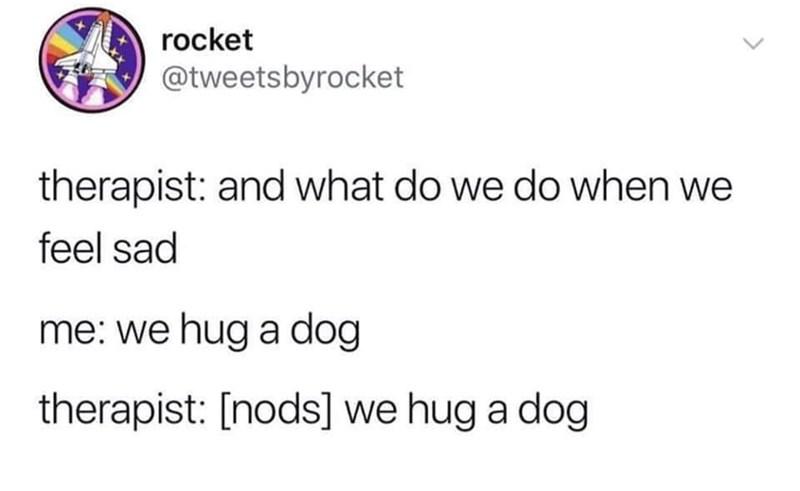 Text - rocket @tweetsbyrocket therapist: and what do we do when we feel sad me: we hug a dog therapist: [nods] we hug a dog