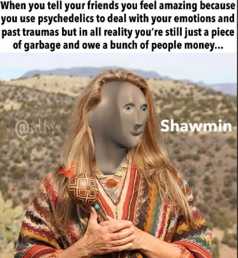 People - When you tell your friends you feel amazing because you use psychedelics to deal with your emotions and past traumas but in all reality you're still just a piece of garbage and owe a bunch of people money... Shawmin