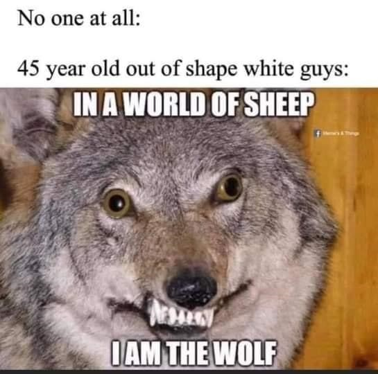 Vertebrate - No one at all: 45 year old out of shape white guys: IN A WORLD OF SHEEP IAM THE WOLF