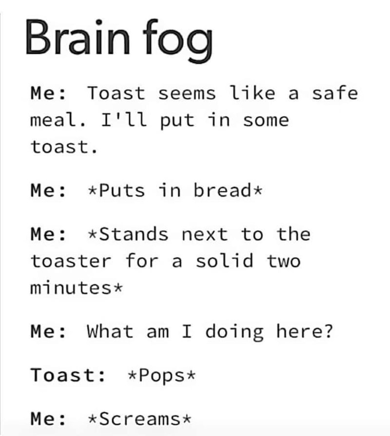 Text - Brain fog Me: Toast seems like a safe meal. I'll put in some toast. Me: *Puts in bread* Me: *Stands next to the toaster for a solid two minutes* Me: What am I doing here? Toast: *Pops* Me: *Screams*