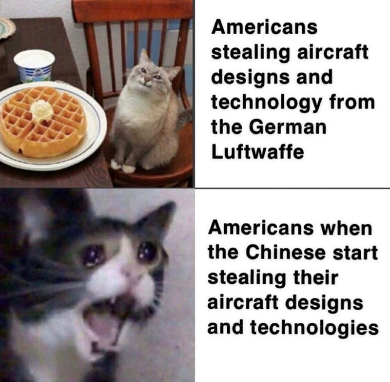 Cat - Americans stealing aircraft designs and technology from the German Luftwaffe Americans when the Chinese start stealing their aircraft designs and technologies
