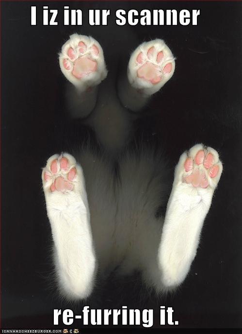 computer fur plotting scanner - 956615936