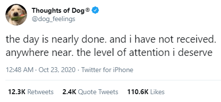 Text - Thoughts of Dog® @dog_feelings the day is nearly done. and i have not received. anywhere near. the level of attention i deserve 12:48 AM - Oct 23, 2020 · Twitter for iPhone 12.3K Retweets 2.4K Quote Tweets 110.6K Likes