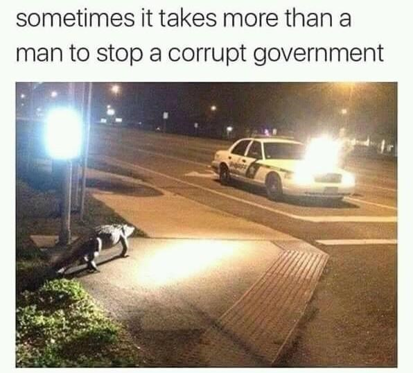 Sky - sometimes it takes more than a man to stop a corrupt government