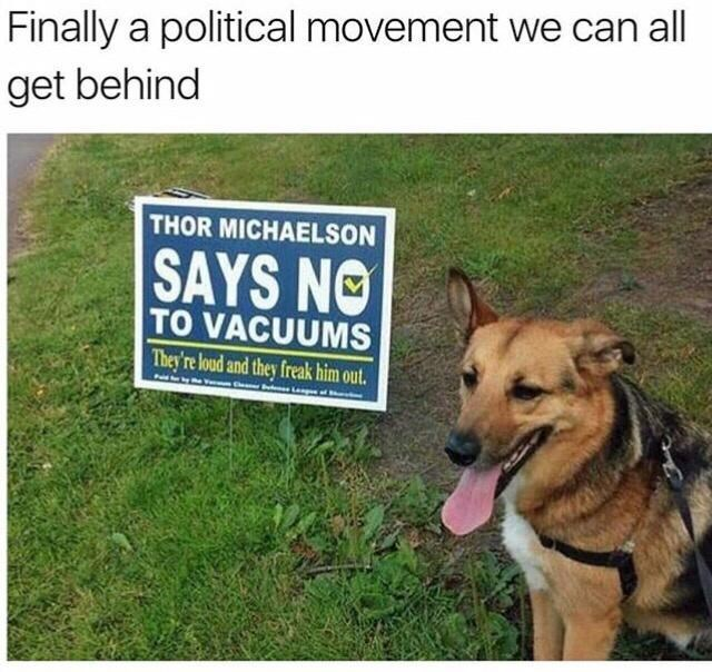 Dog - Finally a political movement we can all get behind THOR MICHAELSON SAYS NO TO VACUUMS They're loud and they freak him out. Deemar nulorsLe