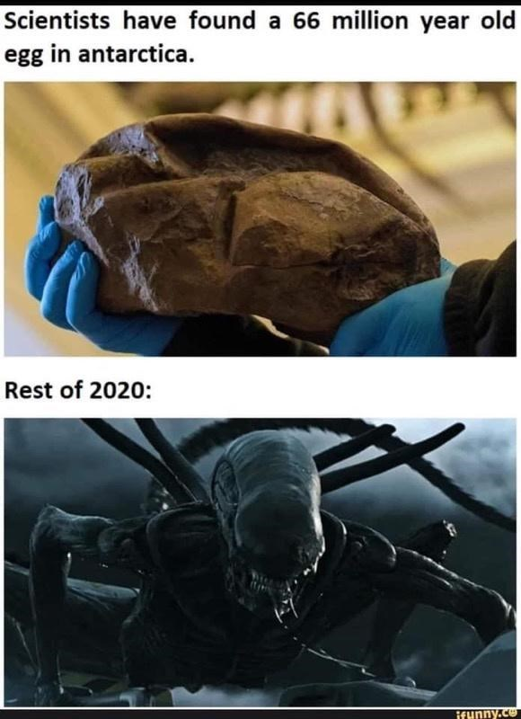 Helmet - Scientists have found a 66 million year old egg in antarctica. Rest of 2020: ifunny.co