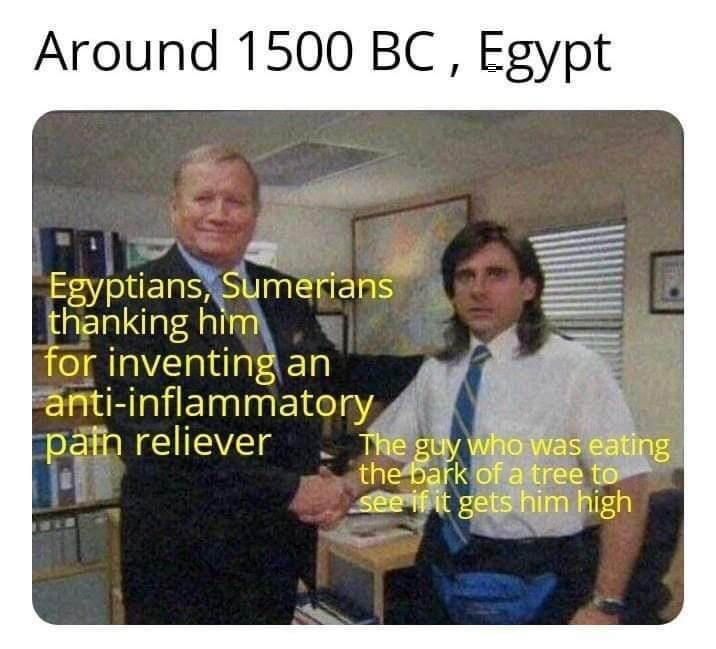 Photo caption - Around 1500 BC , Egypt Egyptians, Sumerians thanking hìm for inventing an anti-inflammatory pain reliever The guy who was eating the bark of a tree to see if it gets him high