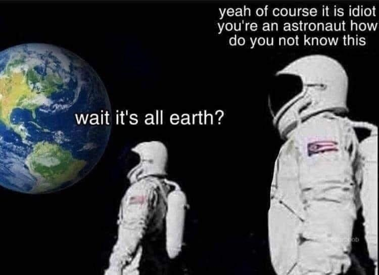 Astronaut - yeah of course it is idiot you're an astronaut how do you not know this wait it's all earth?