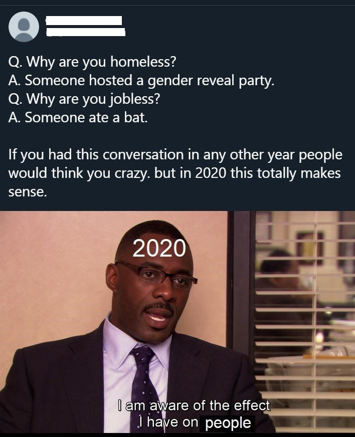 Text - %3D Q. Why are you homeless? A. Someone hosted a gender reveal party. Q. Why are you jobless? A. Someone ate a bat. If you had this conversation in any other year people would think you crazy. but in 2020 this totally makes sense. 2020 I am aware of the effect I have on people