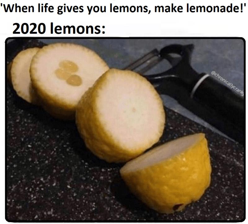 Food - 'When life gives you lemons, make lemonade!' 2020 lemons: @chronicallycrank