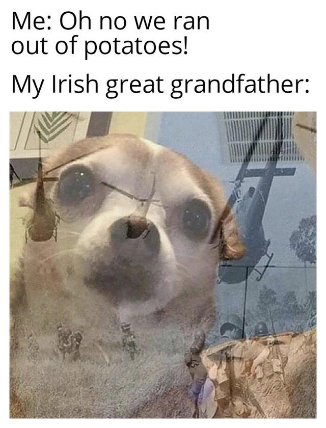 Snout - Me: Oh no we ran out of potatoes! My Irish great grandfather: