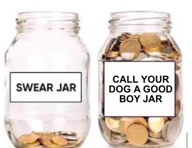 Mason jar - CALL YOUR DOG A GOOD ΒΟΥ JAR SWEAR JAR