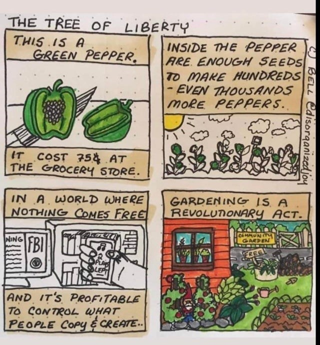 Text - THE TREE OF LIBERTY THIS IS A GREEN PEPPER. INSIDE THE PEPPER ARE. ENOUGH SEEDS TO MAKE HUNDREDS - EVEN THOUSANDS MORE PEPPERS. IT COST COST 754 AT THE GROCERY STORE. IN A WORLD WHERE NOTHING COMES FREE GARDENING IS A REVOLUTONARY ACT. NING FBI GARDEN FREE AND IT'S PROFITABLE To CONTROL WHAT PEOPLE COPY E CREATE.. BELL edisorganizedjoy