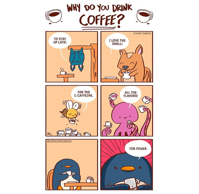 Cartoon - WHY DO YOU DRINK COFFEE? OMATT TARPLEY TO STAY UP LATE! I LOVE THE SMELLI FOR THE C-CAFFEINE. ALL THE FLAVORS! ECATSCAFECOMICS FOR POWER.