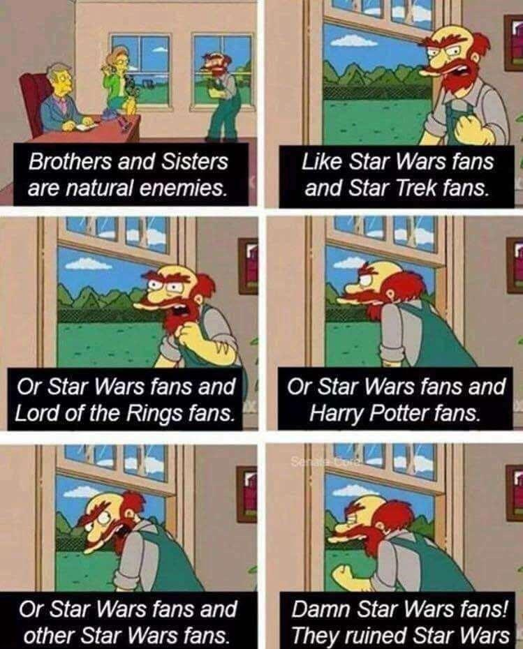 Cartoon - Brothers and Sisters Like Star Wars fans are natural enemies. and Star Trek fans. Or Star Wars fans and Lord of the Rings fans. Or Star Wars fans and Harry Potter fans. Sera C Or Star Wars fans and other Star Wars fans. Damn Star Wars fans! They ruined Star Wars