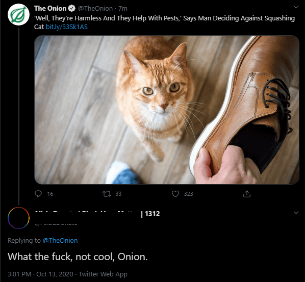 Text - Cat - The Onion O @TheOnion · 7m Well, They're Harmless And They Help With Pests,' Says Man Deciding Against Squashing Cat bit.ly/33SK1AS 16 27 33 323   1312 Replying to @TheOnion What the fuck, not cool, Onion. 3:01 PM - Oct 13, 2020 · Twitter Web App
