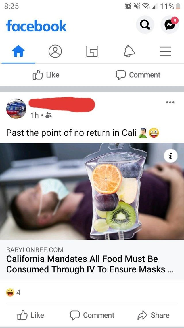 Text - Product - 8:25 facebook Like ל Comment ... 1h• 8 Past the point of no return in Cali BABYLONBEE.COM California Mandates All Food Must Be Consumed Through IV To Ensure Masks .. 4 O Like Comment Share
