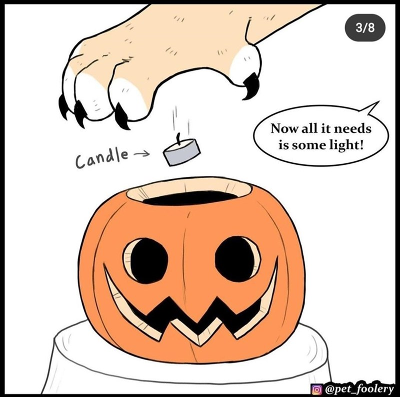 Cartoon - 3/8 Now all it needs is some light! Candle- @pet_foolery