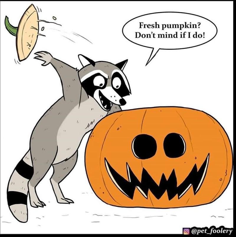 Cartoon - Fresh pumpkin? Don't mind if I do! @pet_foolery