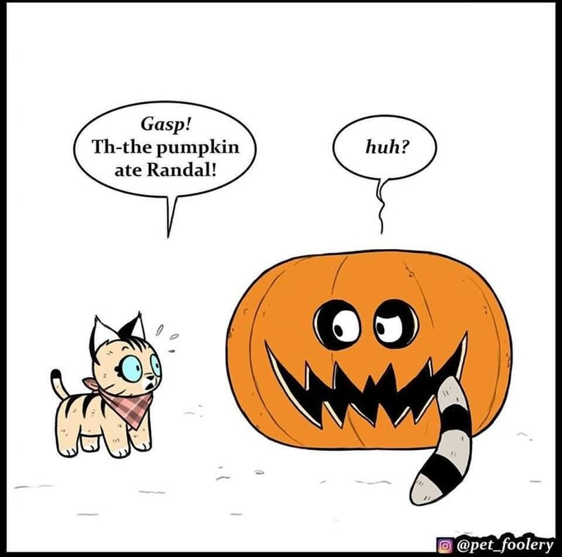Cartoon - Gasp! Th-the pumpkin huh? ate Randal! @pet_foolery