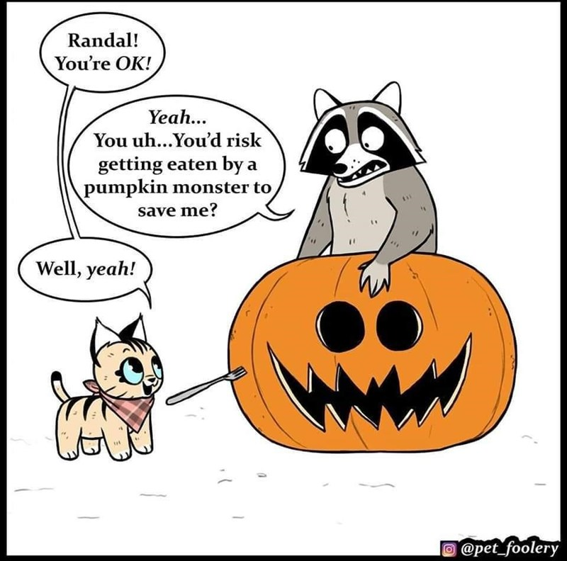 Cartoon - Randal! You're OK! Yeah... You uh...You'd risk getting eaten by a pumpkin monster to save me? Well, yeah! O @pet_foolery