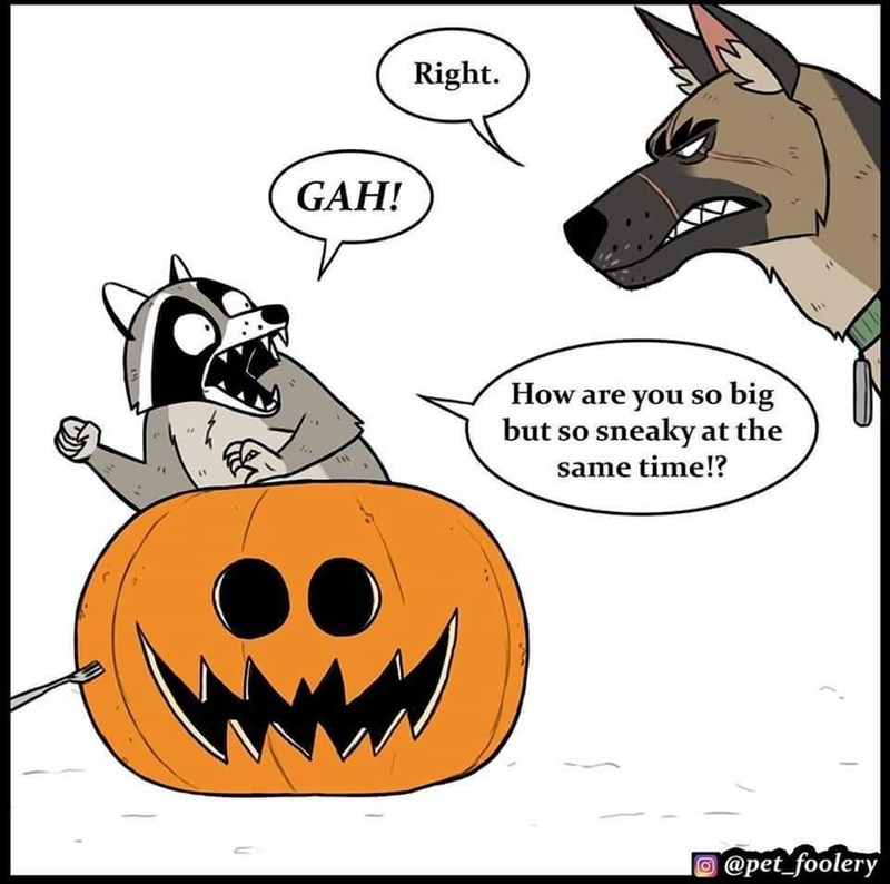 Cartoon - Right. GAH! How are you so big but so sneaky at the same time!? @pet_foolery