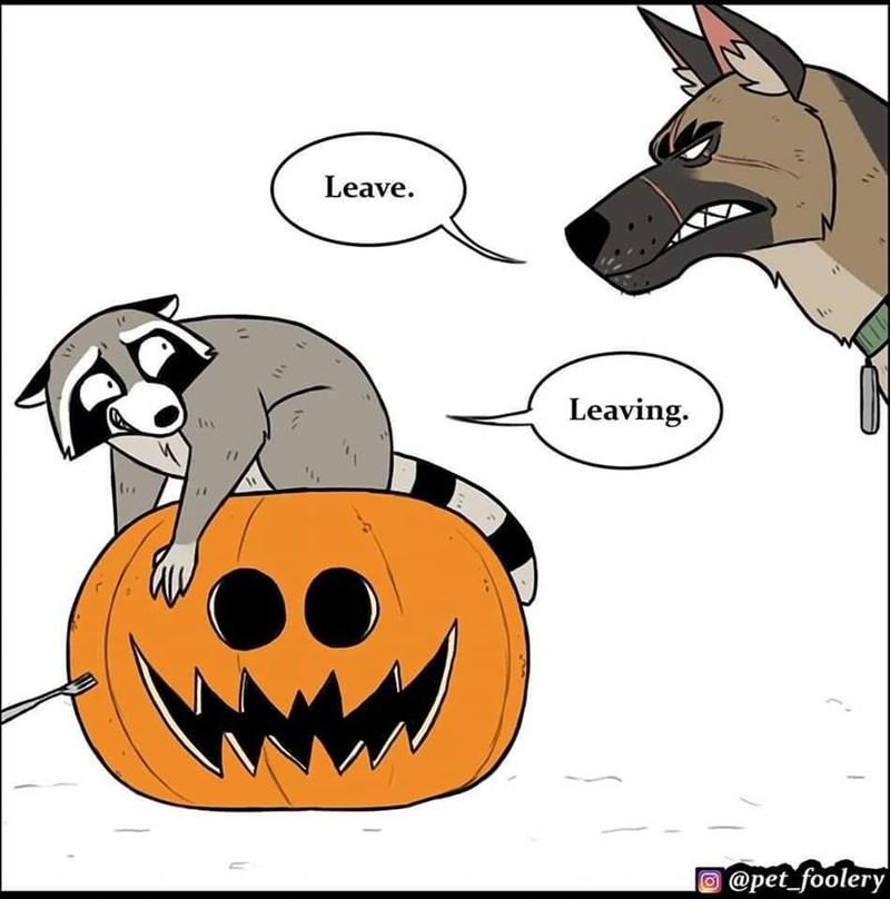 Cartoon - Leave. Leaving. @pet_foolery $11