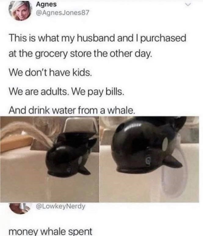 Agnes @AgnesJones87 This is what my husband and I purchased at the grocery store the other day. We don't have kids. We are adults. We pay bills. And drink water from a whale. money whale spent