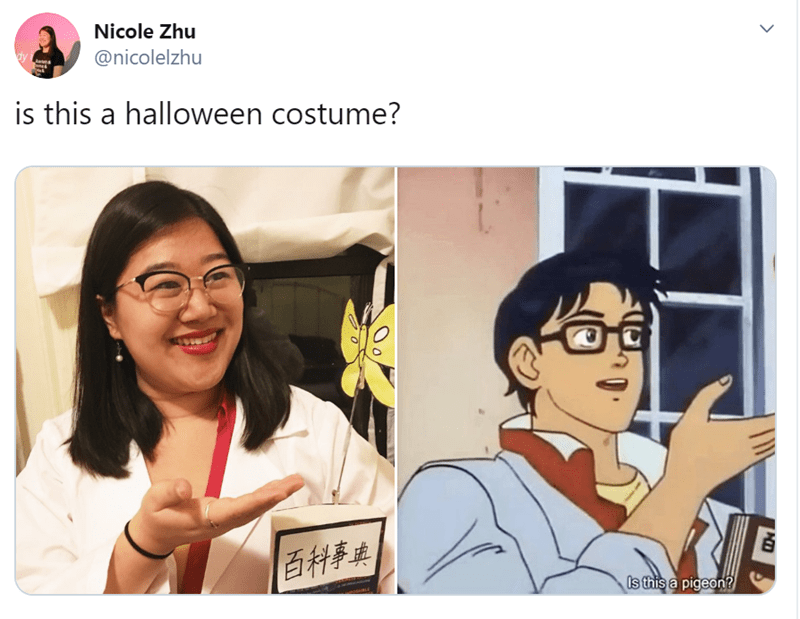 meme based halloween costumes