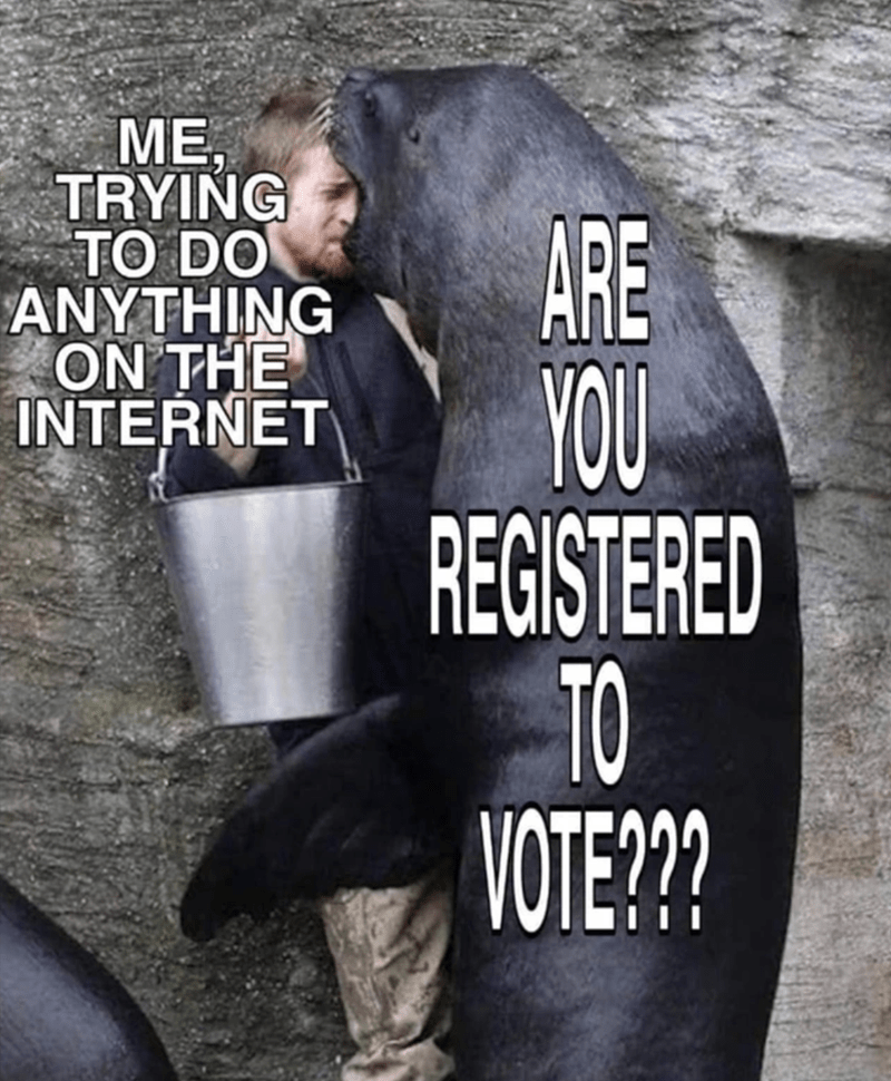 Funny Memes, Relatable Memes, 2020 Memes, Election Memes | ME, TRYING TO DO anything on the internet are you REGISTERED to vote bear cornering a man