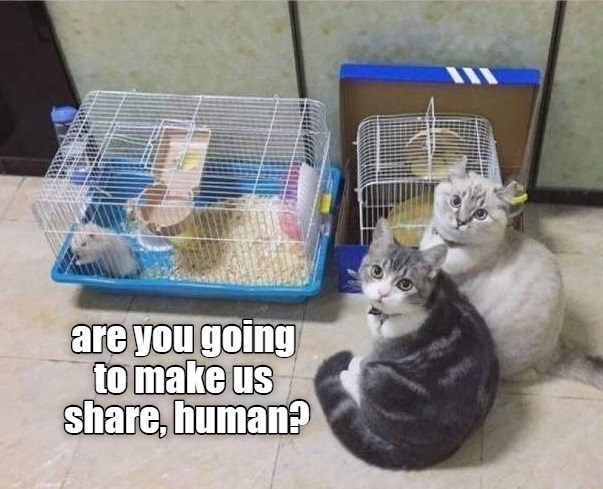Cage - are you going to make us share, human?