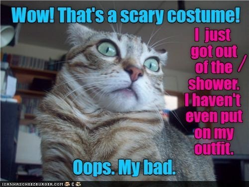 Cat - Wow! That's a scary costume! I just got out of the/ shower. Thaven't even put on my outfit. Oops. My bad. ICANHASCHEEZBURGER.cOM