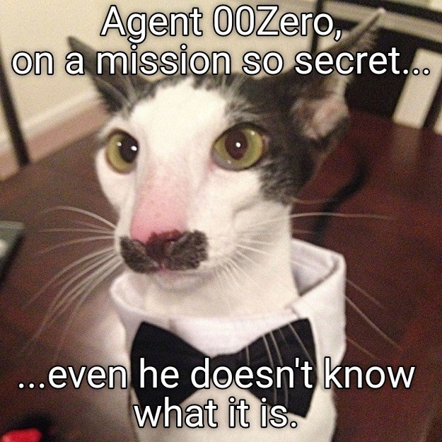 Cat - Agent 00Zero, on a mission so secret.. ...even he doesn't know what it is.