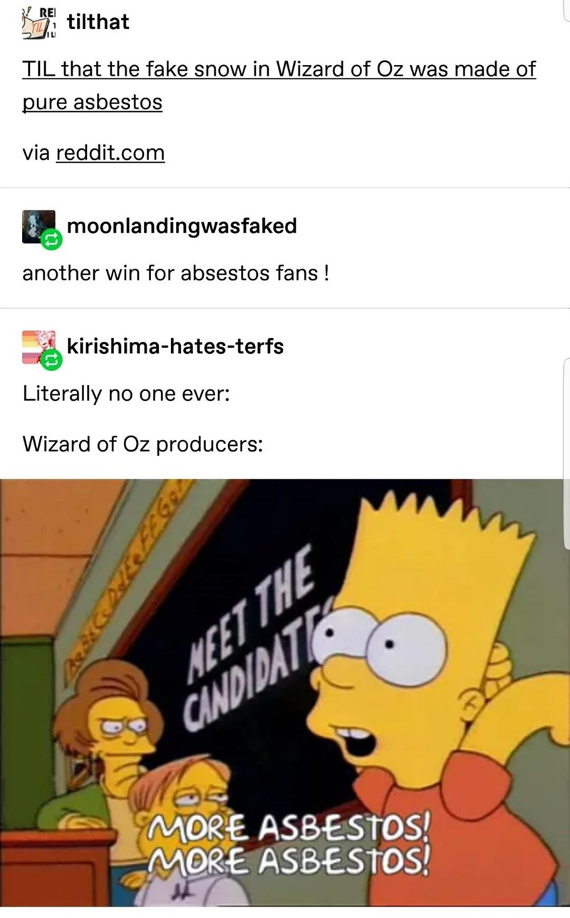 Cartoon - REI i tilthat TIL that the fake snow in Wizard of Oz was made of pure asbestos via reddit.com moonlandingwasfaked another win for absestos fans ! kirishima-hates-terfs Literally no one ever: Wizard of Oz producers: NEET THE CINDIDAT MORE ASBESTOS! MORE ASBESTOS!