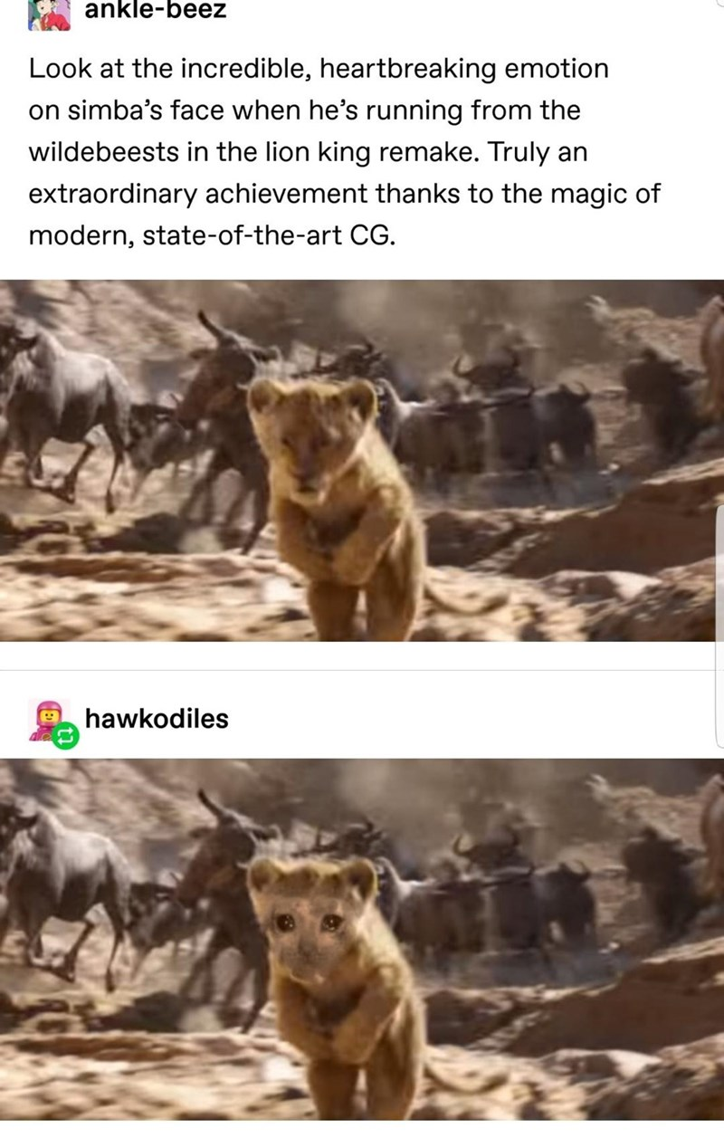 Wildlife - ankle-beez Look at the incredible, heartbreaking emotion on simba's face when he's running from the wildebeests in the lion king remake. Truly an extraordinary achievement thanks to the magic of modern, state-of-the-art CG. hawkodiles