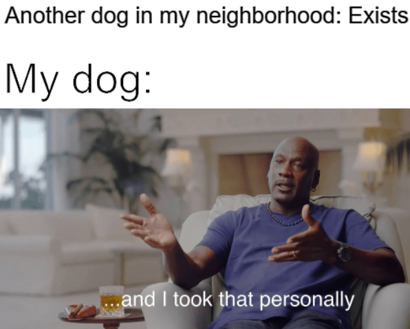 Text - Another dog in my neighborhood: Exists My dog: ...and I took that personally