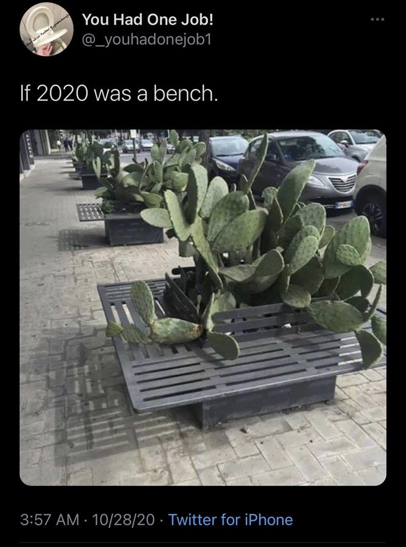 Adaptation - You Had One Job! @_youhadonejob1 on Tailter dona If 2020 was a bench. 3:57 AM · 10/28/20 · Twitter for iPhone