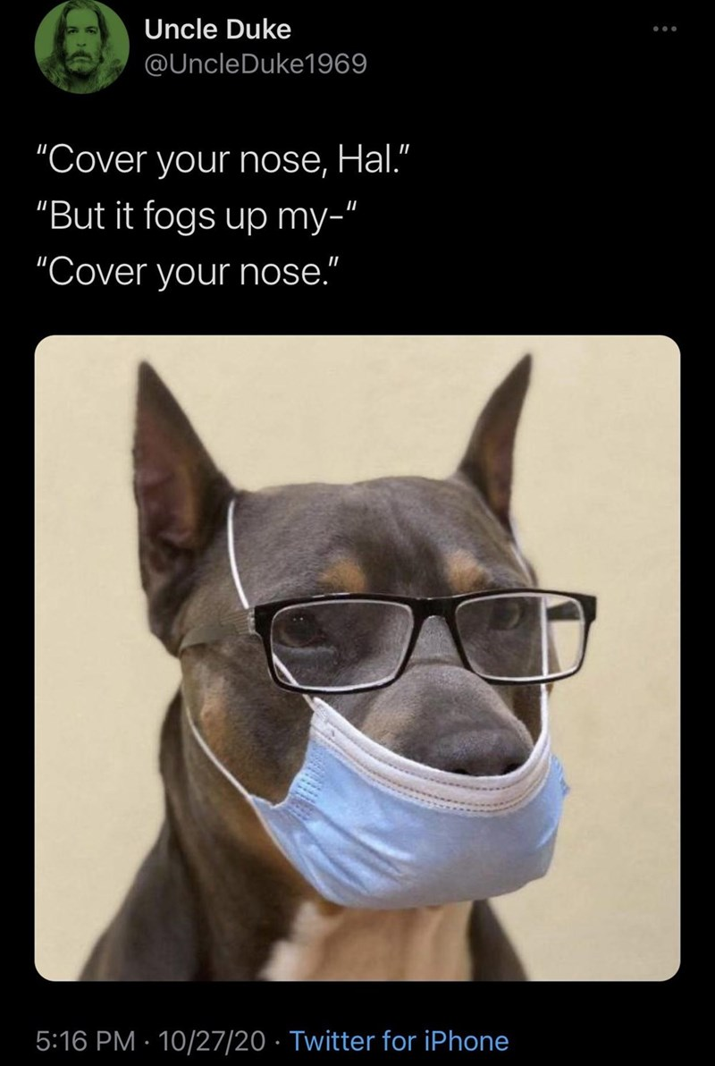 """Canidae - Uncle Duke @UncleDuke1969 """"Cover your nose, Hal."""" II """"But it fogs up my-"""" """"Cover your nose."""" 5:16 PM · 10/27/20 · Twitter for iPhone"""