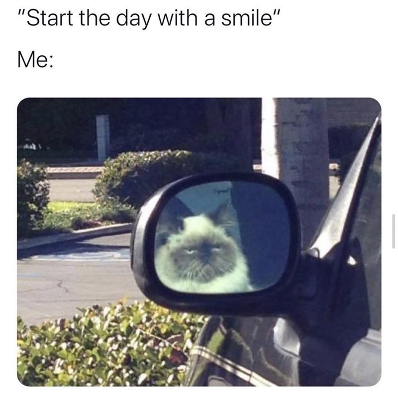 """Rear-view mirror - """"Start the day with a smile"""" Me:"""