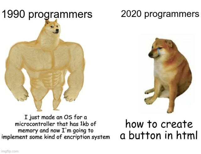 Terrestrial animal - 1990 programmers 2020 programmers I just made an Os for a microcontroller that has 1kb of memory and now I'm going to implement some kind of encription system how to create a button in html imgflip.com