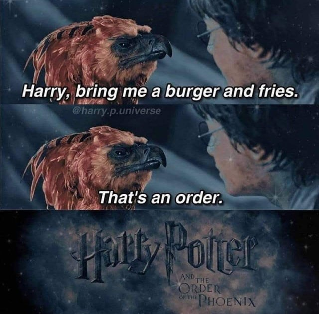 Grizzly bear - Harry, bring me a burger and fries. @harry.p.universe That's an order. AND THE ORDER O THE PHOENIX