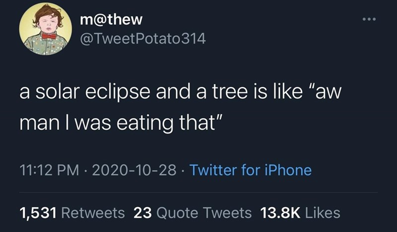 """Text - m@thew @TweetPotato314 a solar eclipse and a tree is like """"aw man I was eating that"""" 11:12 PM · 2020-10-28 · Twitter for iPhone 1,531 Retweets 23 Quote Tweets 13.8K Likes"""