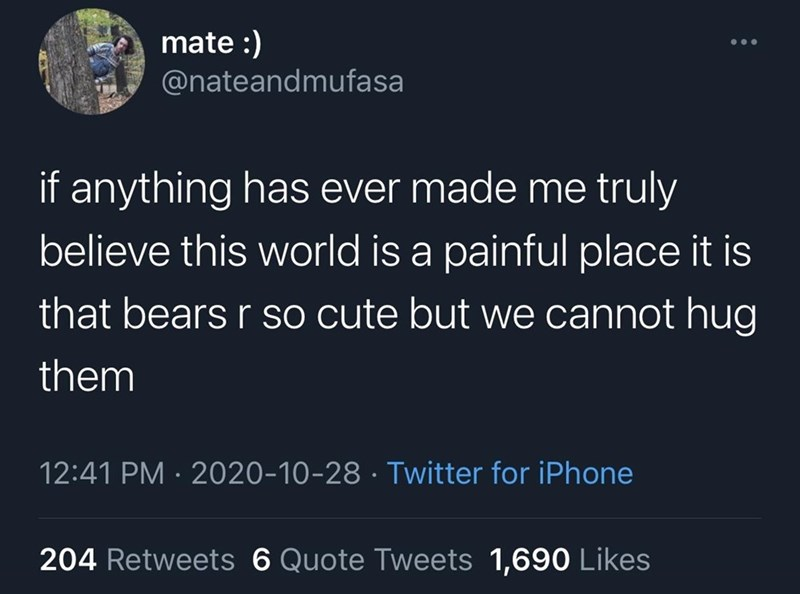 Text - mate :) @nateandmufasa if anything has ever made me truly believe this world is a painful place it is that bears r so cute but we cannot hug them 12:41 PM · 2020-10-28 · Twitter for iPhone 204 Retweets 6 Quote Tweets 1,690 Likes