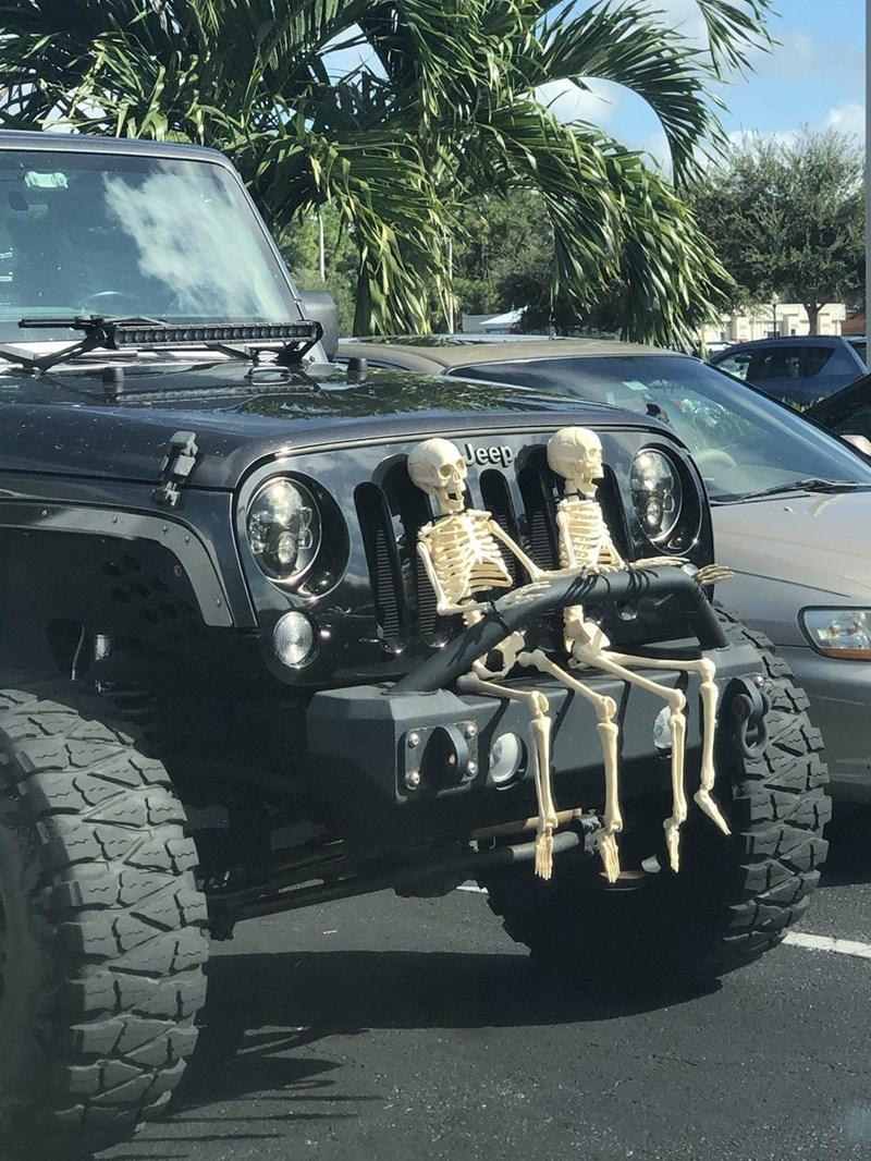 Land vehicle - Jeep