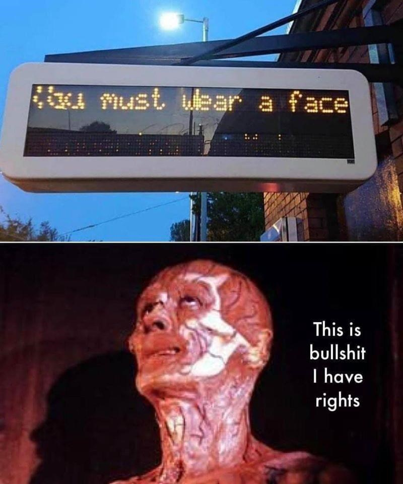 Art - u nust wulear a face This is bullshit I have rights